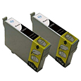 2 X Cartridge EPSON T0801